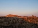 Dünen im Morgenlicht