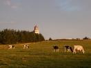 Hanstholmer Leuchtturm